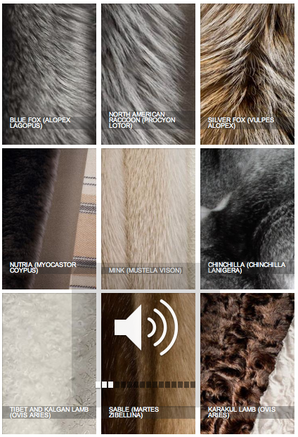 Types of Fur